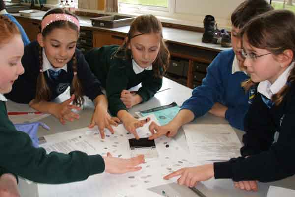 Forensic Science Teamwork